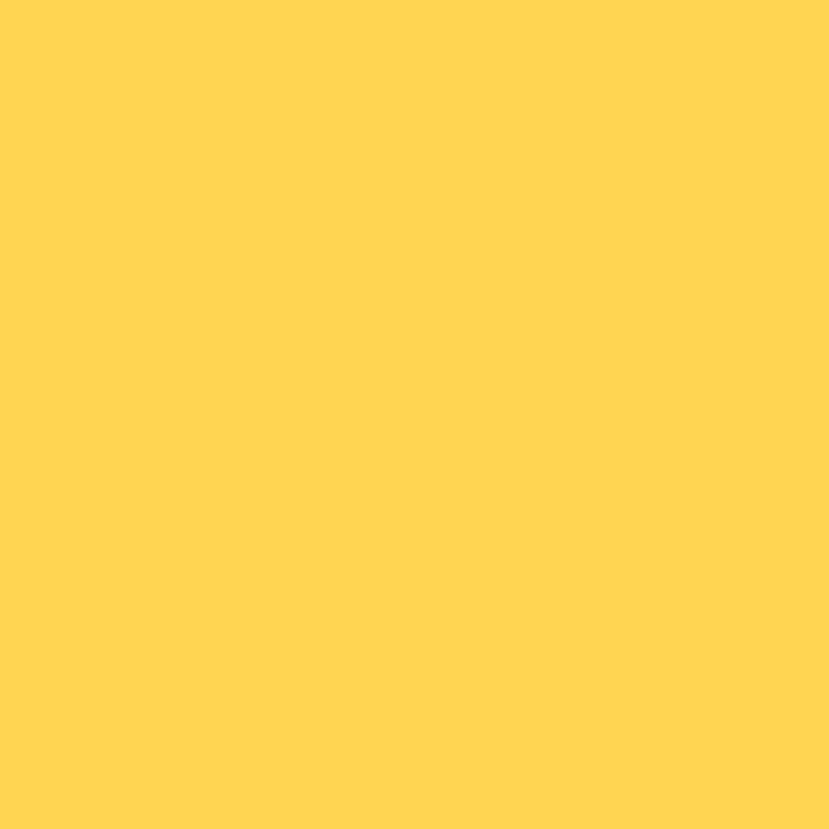 RapidRoll RAL Colour 1021